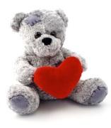 teddy-1641_640